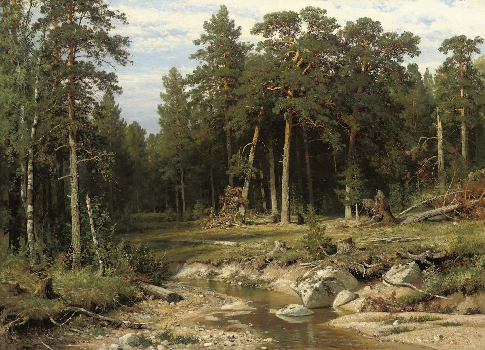 10_ Mast Pine Forest in Viatka Province by Ivan Shishkin_
