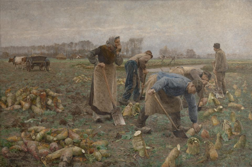6_The Beet Harvest by Emile_Claus