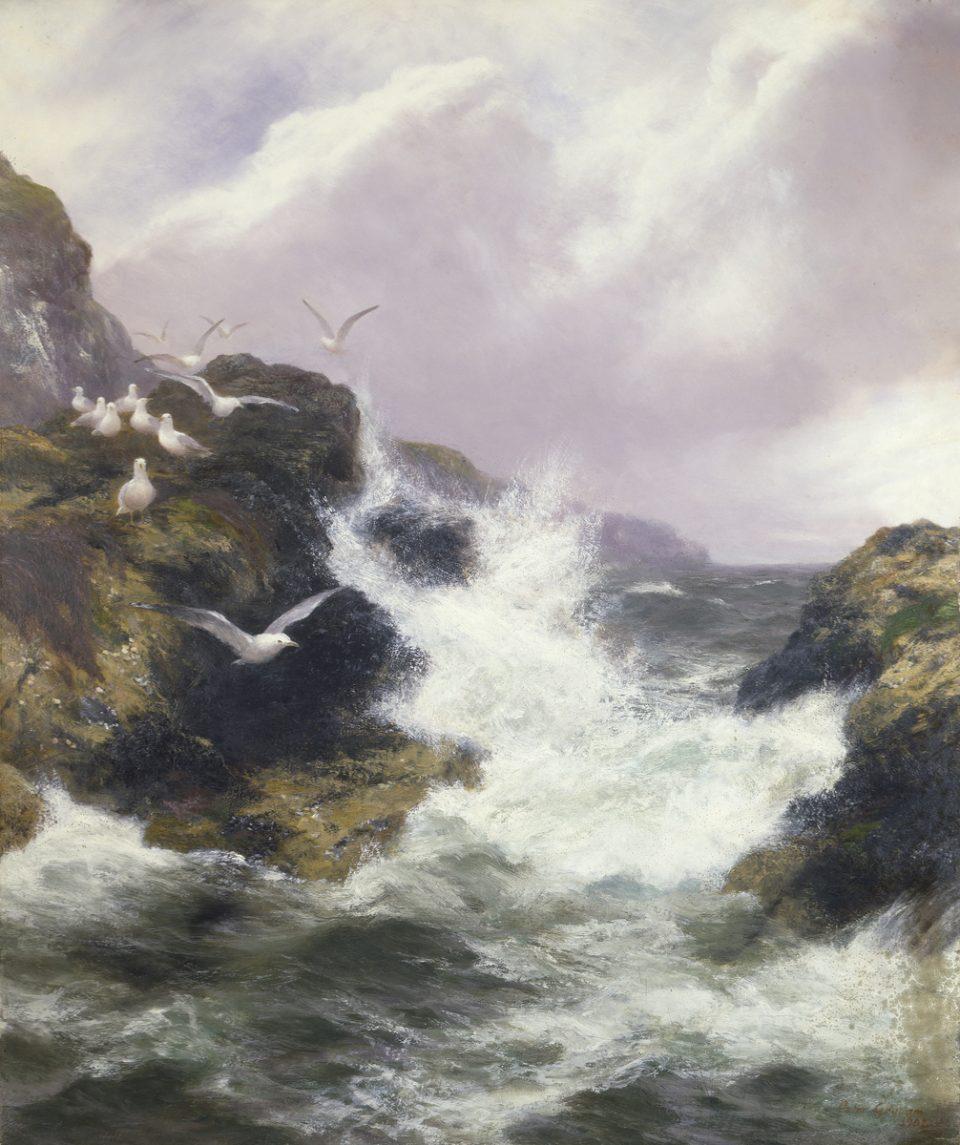 8_The-Sea-Bird's-Domain-by-Graham